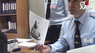 Download СтопХам - По встречке в полицию 🚓🚑 Video