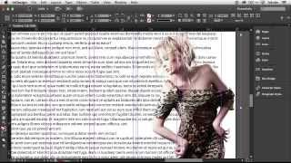 Download How To Get Started With Adobe InDesign CC - 10 Things Beginners Want To Know How To Do Video