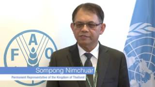 Download Remarks by Sompong Nimchuar, Permanent Representative of the Kingdom of Thailand Video