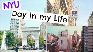 Download Day in the Life of an NYU Student #2 Video