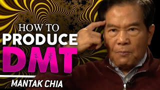 Download HOW TO PRODUCE NATURAL DMT - Mantak Chia   London Real Video