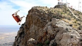Download Mysterious Animals That Fell From The Sky! Video