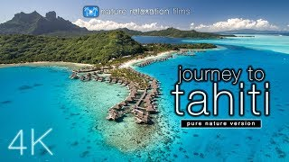 Download JOURNEY to TAHITI (4K UHD Nature Sounds Only) Whales & Beaches - Ambient Film for Relaxation Video