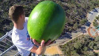 Download CATCHING FRUIT from 45m TOWER! Video