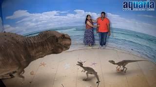 Download 3D Illusion Show In Kuala Lumpur Aquaria, Malaysia Video