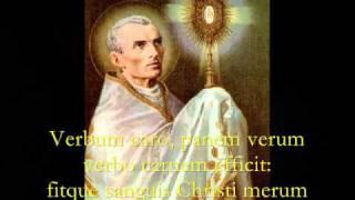 Download Pange Lingua Gloriosi - Catholic Hymns, Gregorian Chant Video