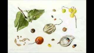 Download Anastazja mówi o tym jak wysiewać nasiona aby zebrały informację o naszych chorobach Video