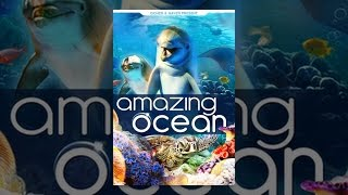 Download Amazing Ocean Video