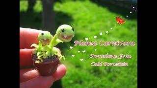 Download Planta Carnívora en Porcelana Fria / Cold Porcelain Video