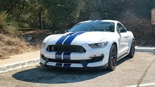 Download Canyon Climb Challenge: Shelby GT350 vs Running Video