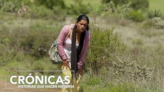 Download Con engaños convencieron a una madre inmigrante de dejar su familia Video