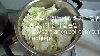 Download 양배추 데치는법 데치기 손질법 손질하기 삶기 삶는법 How to blanch boil trim cut cabbage Video