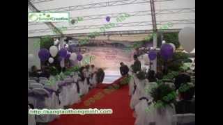 Download Dịch vụ trang trí đám cưới Video