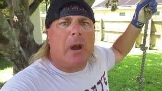 Download Ronda Rousey Needs to Train with Donnie Baker for MMA Fights Video