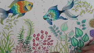 Download Secret Garden Coloring Book | Fish Video