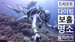 Download Drift Scuba Diving 조류.빠르게.드리프트 스쿠버다이빙 Video