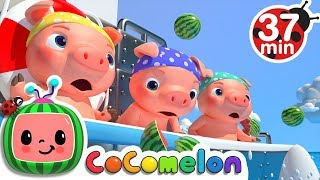 Download Three Little Pigs 2 (The Big Ship Sails on the Alley Alley Oh) | +More Nursery Rhymes - CoCoMelon Video