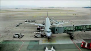 Download 8 Tips on Earning Frequent Flyer Points Using Your Credit Card Video