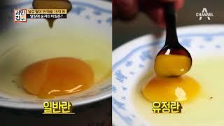 Download [교양] 서민갑부 179회 180524 500원의 기적! 15억 황금 알을 만드는 사나이 Video