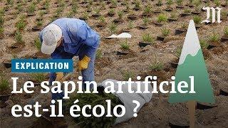 Download Sapin de Noël naturel ou artificiel, lequel est plus écologique? Video