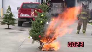 Download What Happens When Your Christmas Tree Catches Fire? (Live AND Artificial) Video