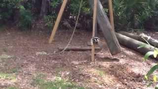 Download DIY Tripod Hoist Video