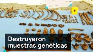 Download Gobierno de Javier Duarte destruyó bases de muestras genéticas - Despierta con Loret Video