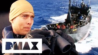 Download The Sea Shepherds Go Head To Head With Whaler Factory Ship   Whale Wars Video