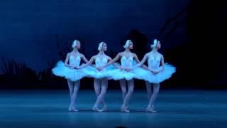 Download Танец маленьких лебедей Video