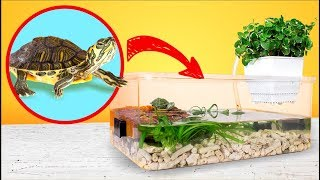 Download Simple and Cheap Red Eared Turtle Terrarium Tank DIY Video