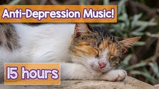 Download NEW Soothing Music for Depressed Cats and Kittens! Music to Calm Cat Separation Anxiety & Depression Video