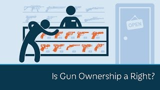 Download Is Gun Ownership a Right? Video