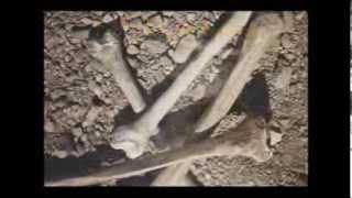Download Ezequiel - Georgete Rocha Video