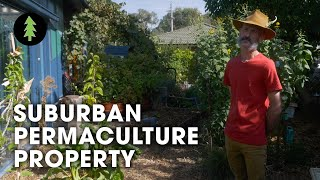 Download Small Backyard Transformed Using Permaculture! (Permaculture Tours - Ep 1) Video