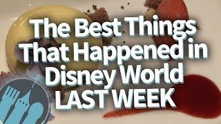 Download The BEST Things That Happened To Me in Disney World LAST WEEK! Video
