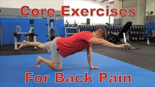Download FIVE Best Core Exercises for Back Pain (Protects Spine!) Video
