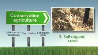 Download SLM 12 Conservation Agriculture Video