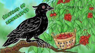Download Group Bias & Black Pigeon Speaks Video