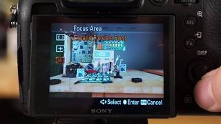 Download Sony RX10 IV - Focus Area & Focus Modes Video