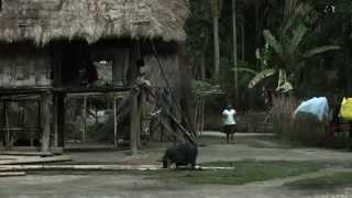 Download Le Brahmapoutre - Croisières à la découverte du Monde (Documentaire, Découverte, Histoire) Video