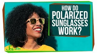 Download How Do Polarized Sunglasses Work? Video