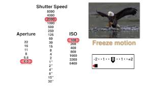Download Pick the Best Aperture, Shutter Speed and ISO Settings Video