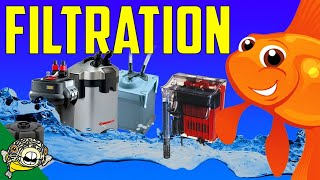 Download Filtration, the most heated Aquarium Topic! The live Stream edition. Video