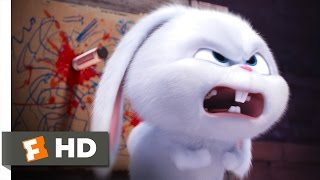 Download The Secret Life of Pets - You Know Tiny Dog? Scene (6/10) | Movieclips Video