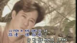 Download 罗宾 - 榕树下 Video