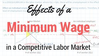 Download Minimum Wages in Competitive Labor Markets Video