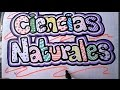 Download Como marcar un cuaderno de ciencias naturales Video