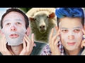 Download Guys Put Animal Placenta On Their Faces Video