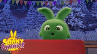 Download Cartoons For Children | SUNNY BUNNIES - Jingle Bell Bunnies | New Episode | Season 4 | Cartoon Video