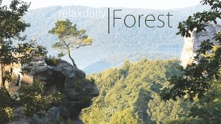 Download Light Easy Listening Music - relaxing, peaceful, smooth music Video